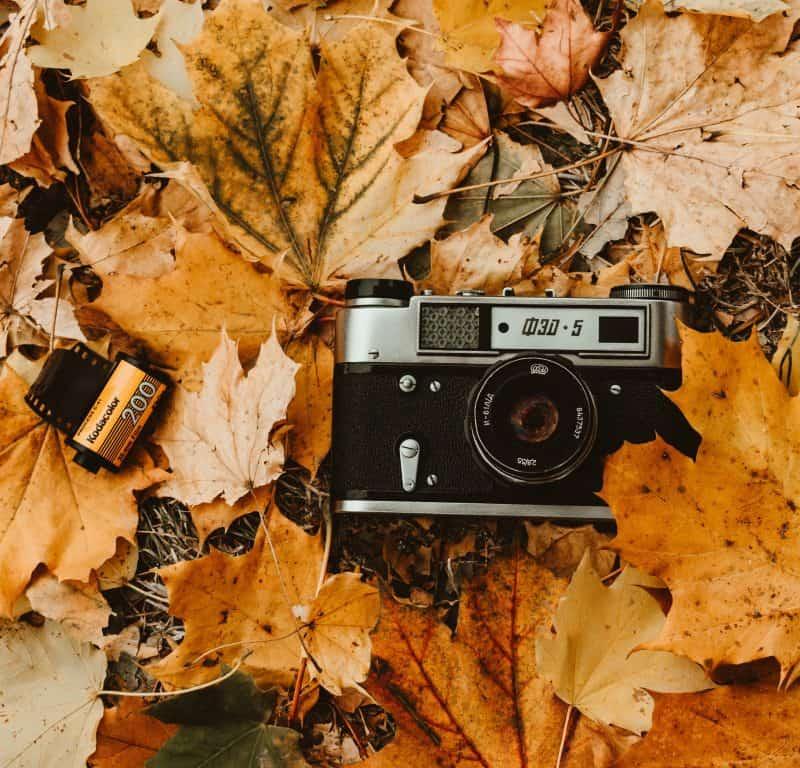 Διαγωνισμός Κυνηγετικής Φωτογραφίας